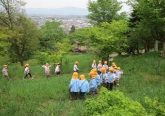 春を探しに…舞鶴山でみつけたよ
